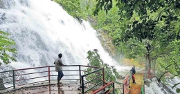 Why couples flock to Kanjirakolli