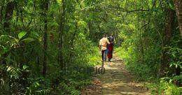 Visitors flock to Pathiramanal Island as 'ezhilam pala' blooms