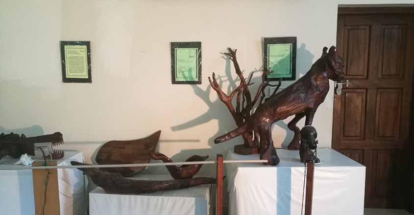 driftwood-museum-kottayam-3