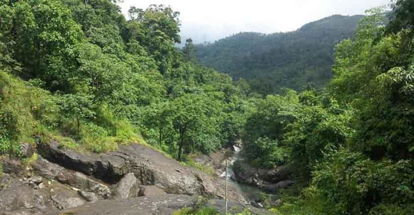kakadampoyi-stream