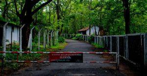 Visiting Wayanad? Stop over at serene Nilambur