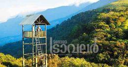 Palakkad: where nature unleashes its beauty