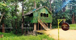 Mesmerising night-stay at tree houses in Parambikulam, Palakkad