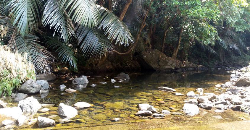 meenvallom-trip13
