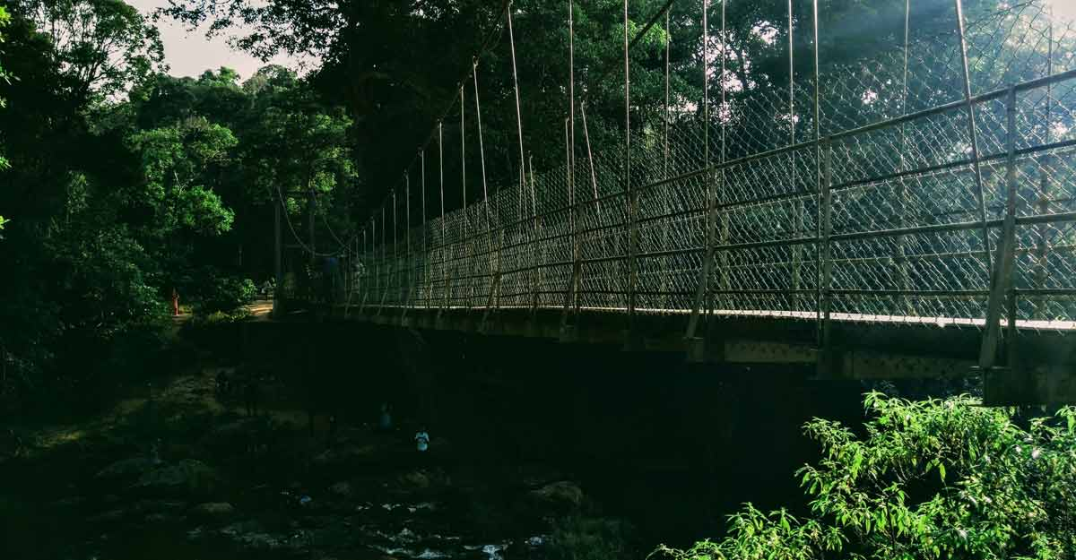 hanging-bridge-nelliyampathy