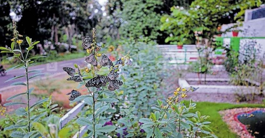 Garden with a difference in Palakkad