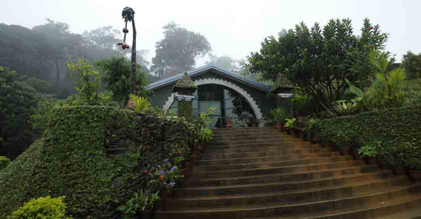 Gavi Green Mansions