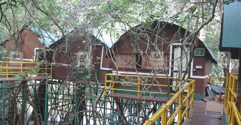 adavi huts