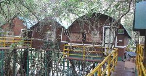 Renovated bamboo huts at Adavi await visitors