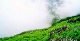 Ponmudi - Kerala's golden peak | Weekend destination from Thiruvananthapuram