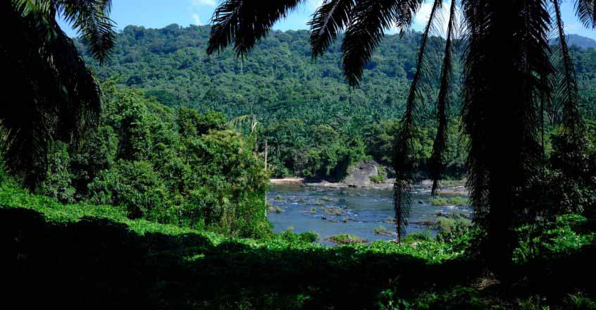 Athirappilly-2