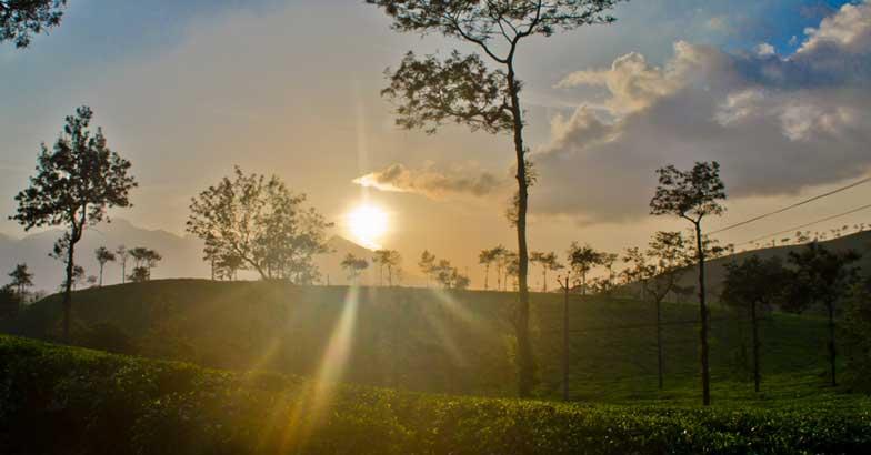 The Kerala connection of Lee Falk's Phantom