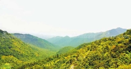 Pakramthalam: a mountain pass with marvelous views