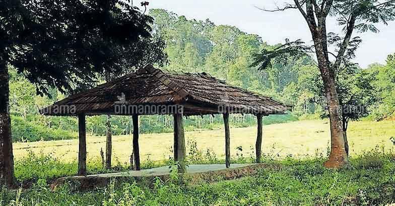 Chettiyalathur:  for a sneak peek at rustic village life
