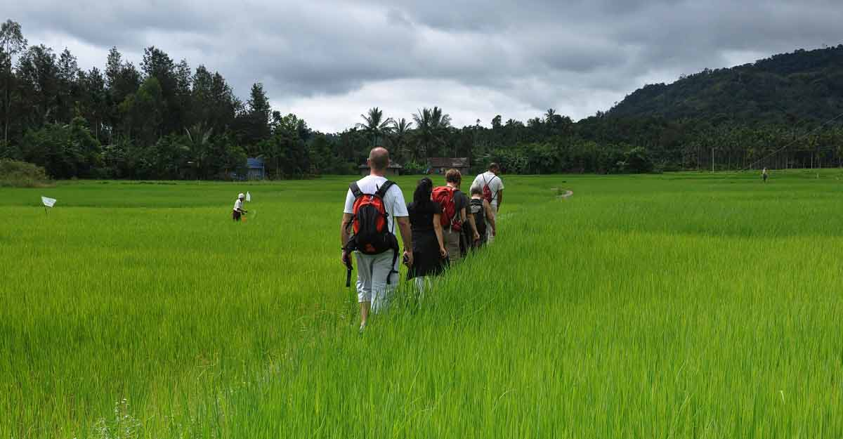 Walking trail along Kabani to trace forest paths of indigenous people