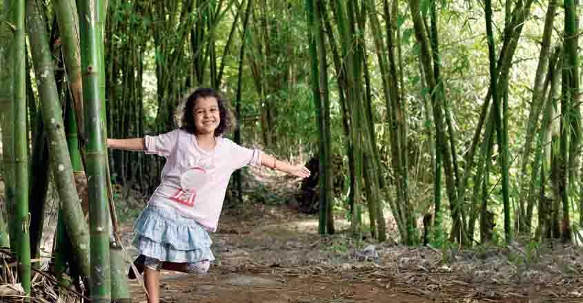 bamboo-uravu