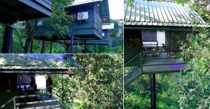A perfect holiday amidst Wayanad's wildlife