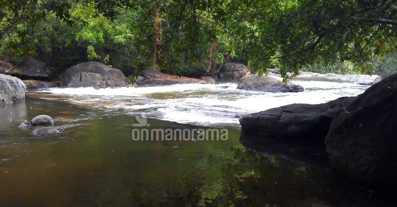 Escaping into the wilderness of the legendary Thommankuthu