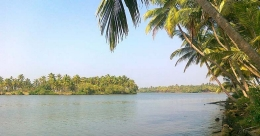 Kavvayi Backwaters is sure to enthral!