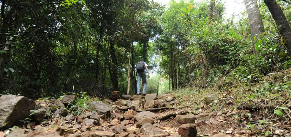 In Kannur for a vacation? Here's what you can do