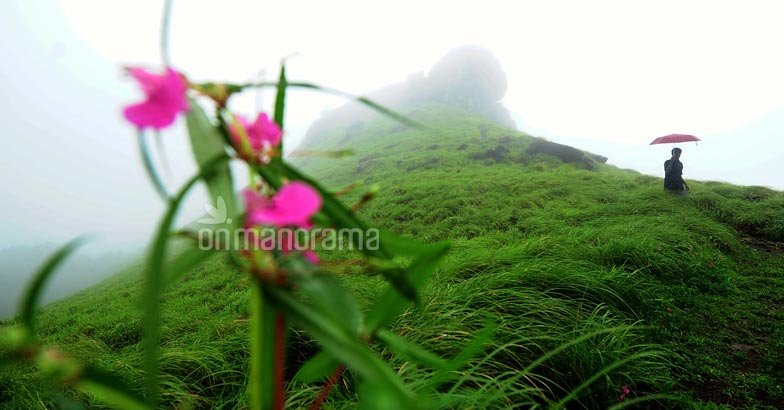 Ranipuram: Kasaragod's very own Ootty