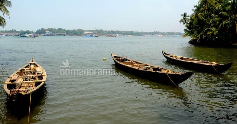 Tracing the river of gold across Nilambur