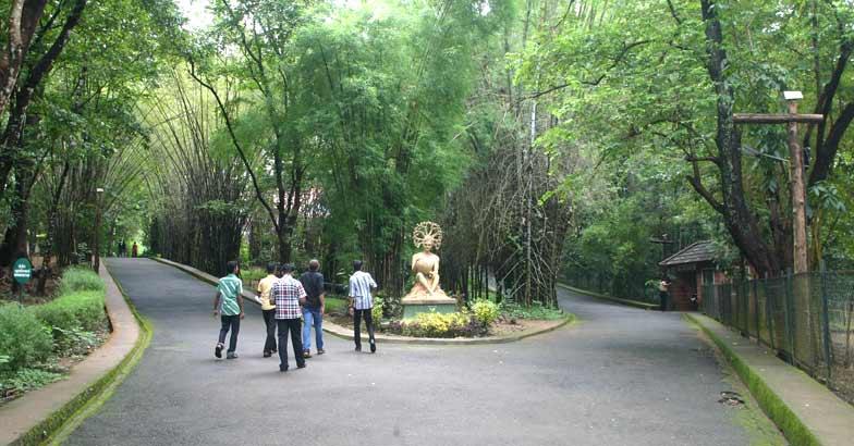 A must visit: Nilambur Teak Museum