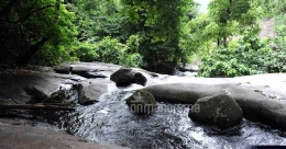 A trek to Dhoni waterfalls