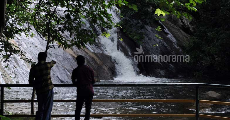 A trek to Dhoni waterfalls