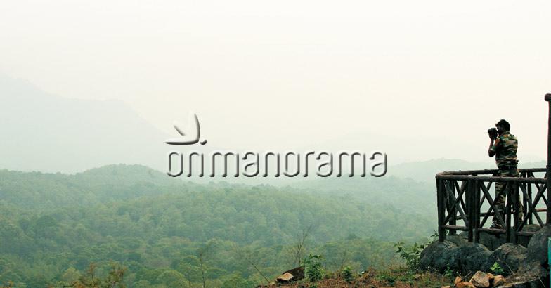 Parambikulam