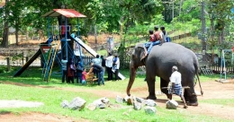 The elephant chronicles from Konni