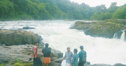 Perumthenaruvi Falls will lure you