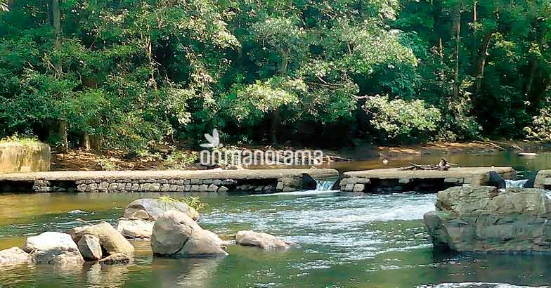Wait, you have not seen Pathanamthitta yet!
