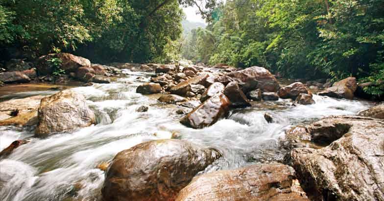 Kallar stream