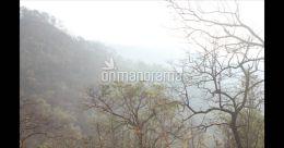 High up in the hills of Charpa, there is a heaven called Kurishumudi peak| Pix