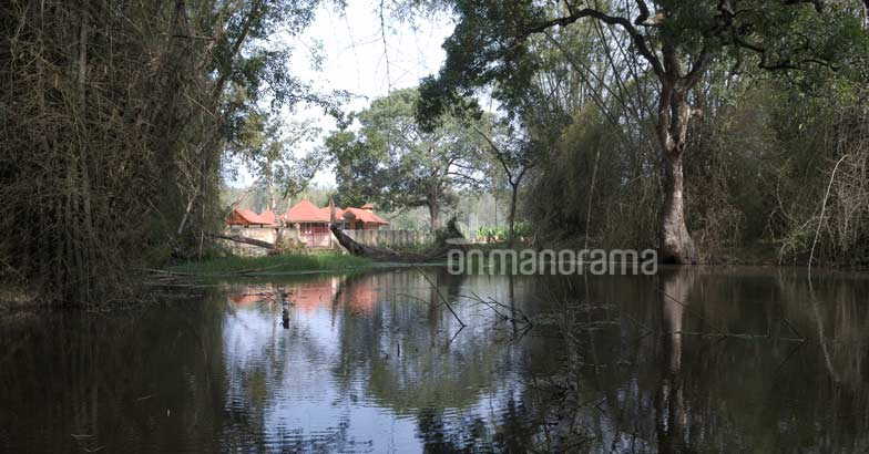 Sita Devi lived here once