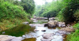 Pssst, did you know 'Thollayiram' is Wayanad's best kept secret?