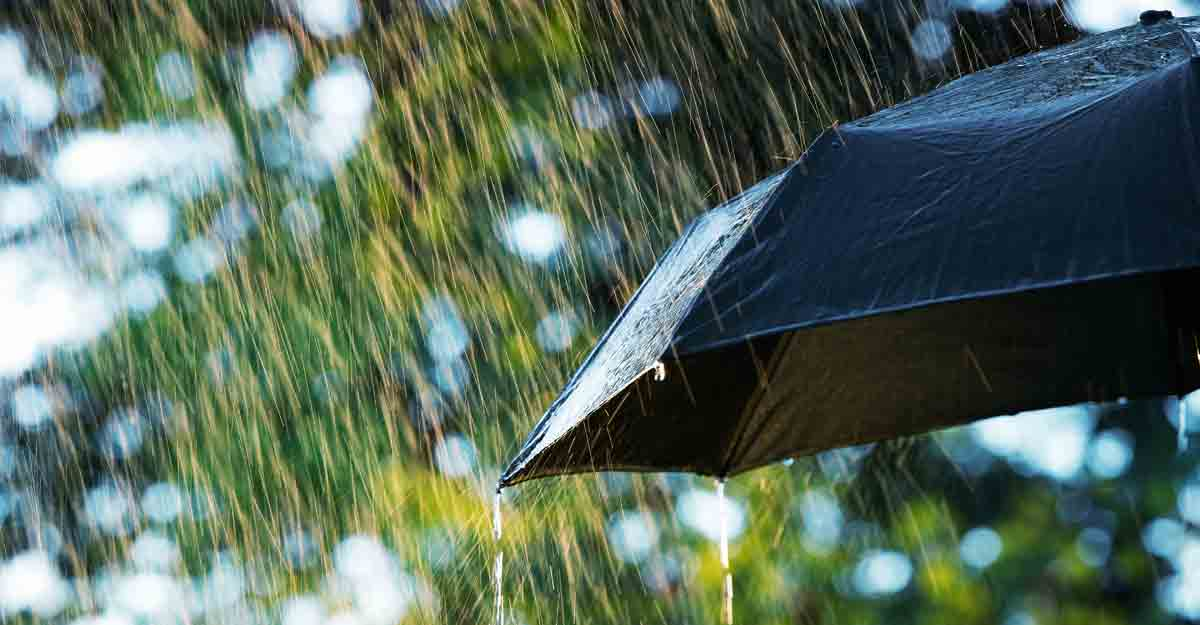 Has monsoon arrived in Kerala? Skymet says yes, IMD differs