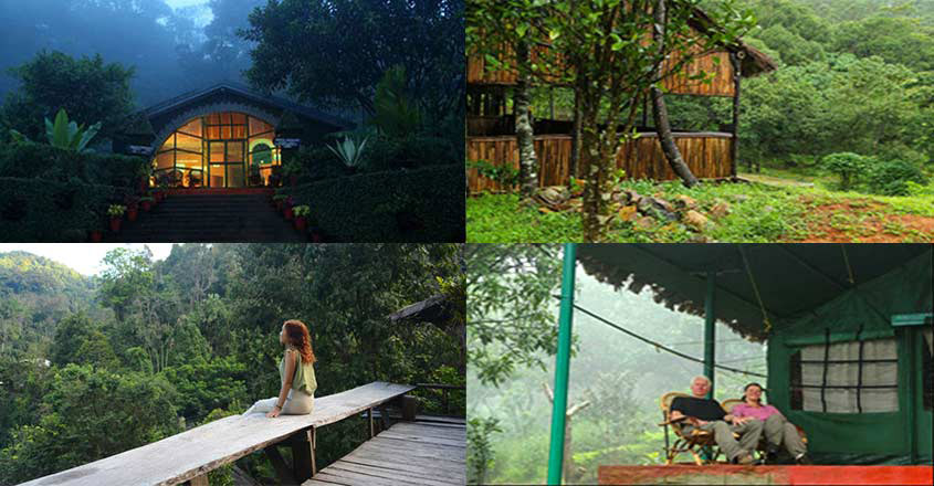 Top destinations to experience wilderness in Kerala