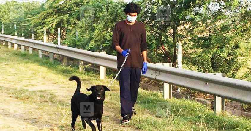 sakhi-story-dog