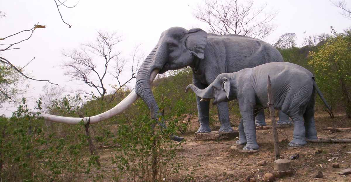 Siwalik Fossil Park. (Photo Courtesy: Wikipedia)