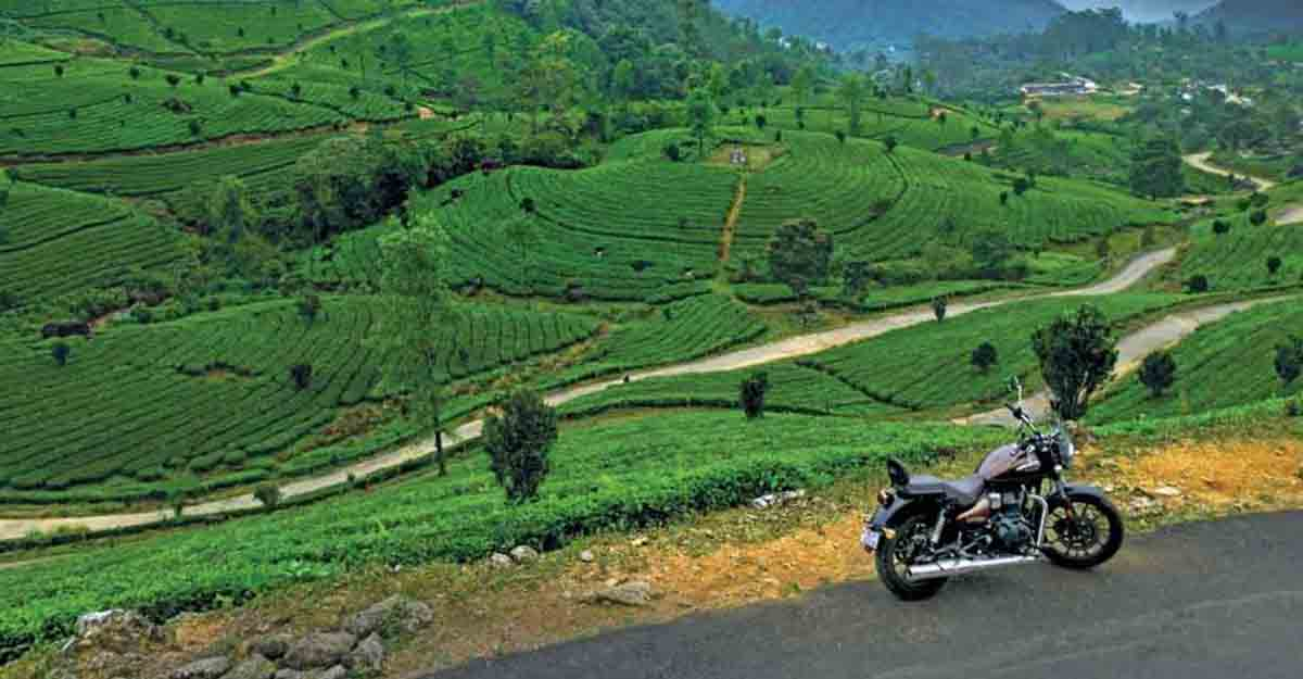 Biking our way to Munnar's Lakshmi Estate