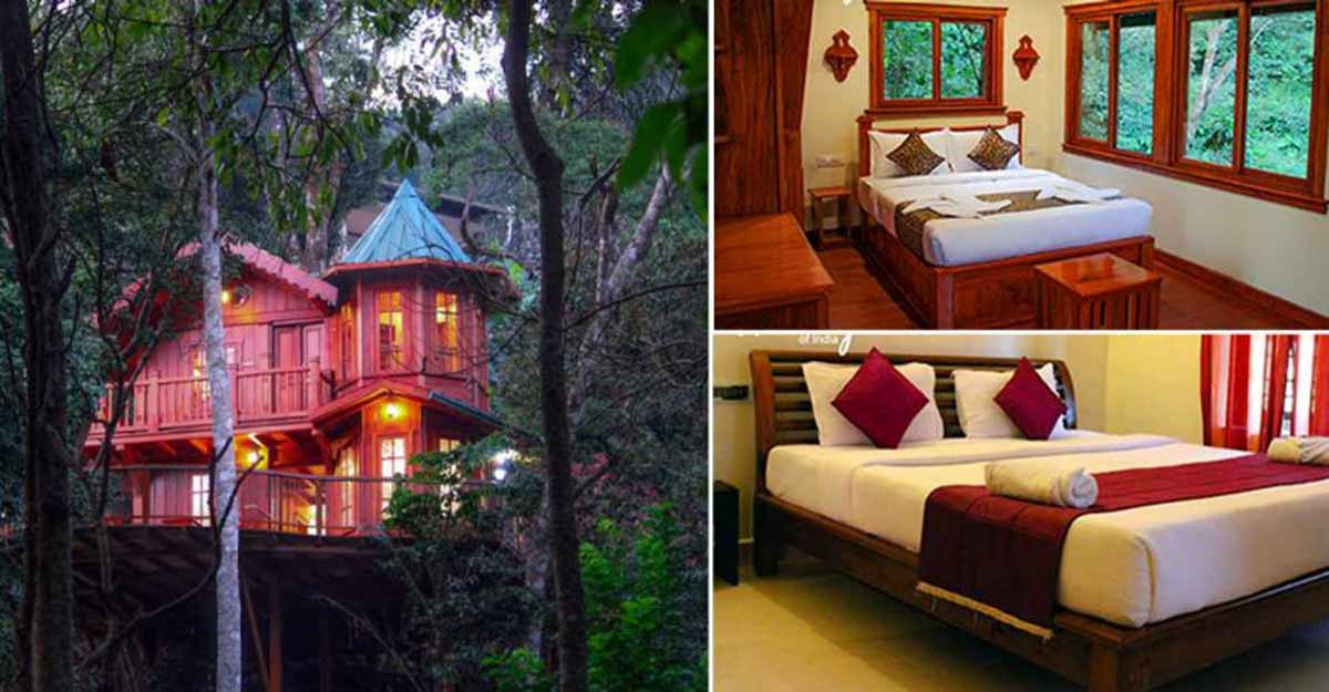 Visit Coorg to experience the thrill of staying in wilderness