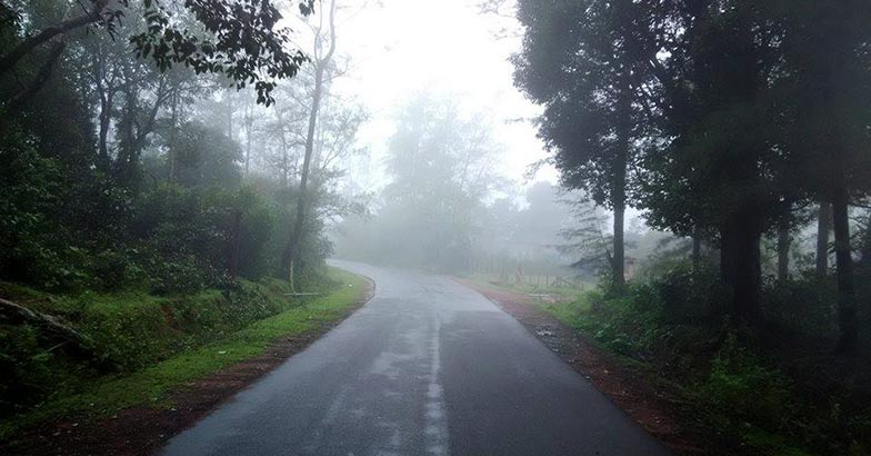 A trip to the misty magical Agumbe during the monsoons.