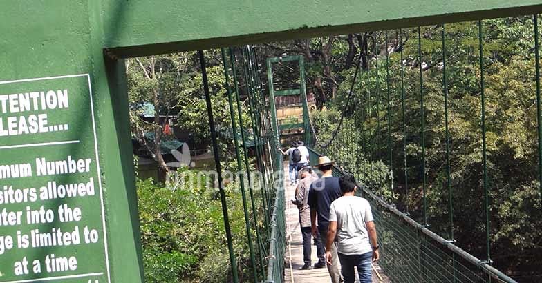 A weekend trip to Idimuzhanganpara