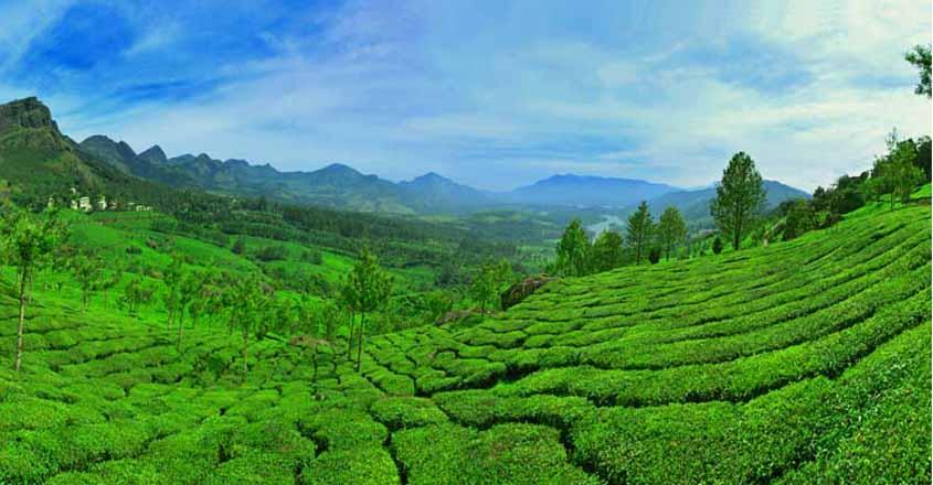 Kerala shouldn't take a leaf out of Maldives or Goa's book