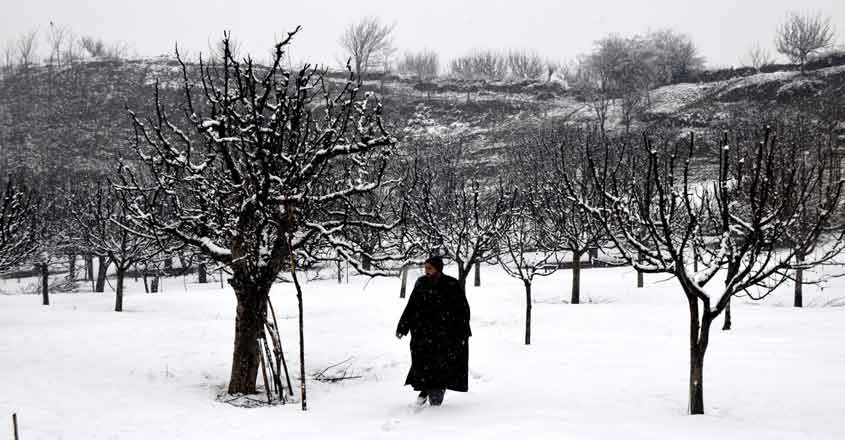 After decades, Kashmir relives its snowed-in winter
