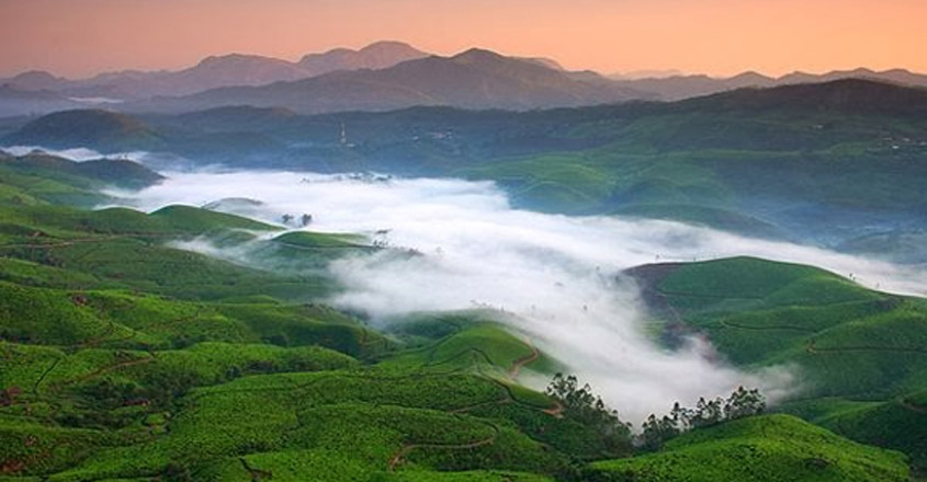 Munnar, a beauty draped in mist