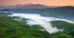 Tourism activities slowly resume in Munnar