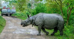 Assam's Kaziranga National Park reopens after 7 months